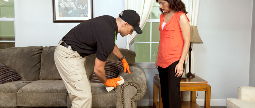 Norwich, CT carpet upholstery cleaning