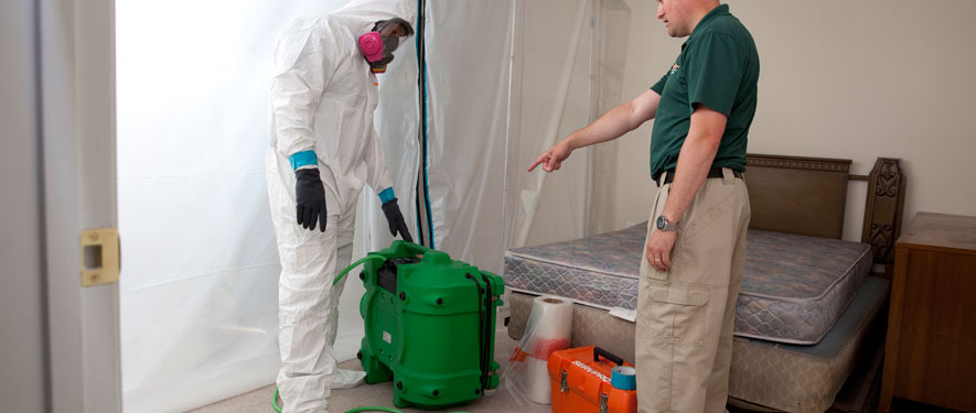 Norwich, CT mold removal process